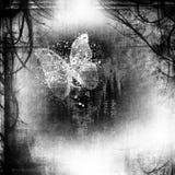 Astrazione di Grunge con la farfalla Immagine Stock