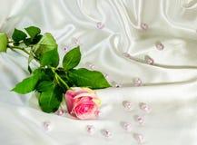 Astrazione di una rosa su un tessuto di seta Fotografia Stock