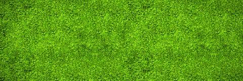 Astro murawy powierzchnia Zdjęcia Royalty Free