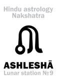 Astrologi: Mån- station ASHLESHA ( nakshatra) Arkivbilder