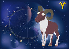 Astrological signs ram. Astronomy backgrounds zodiac Royalty Free Stock Images