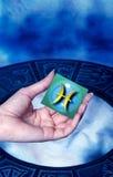 astrologiskt pisces tecken Arkivbilder