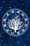 Horoscope with tree of life zodiac signs over starry Universe background like astrology concept stock images