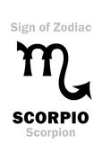 Astrology: Sign of Zodiac SCORPIO (The Scorpion) Royalty Free Stock Photography