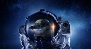First trip to space. Mixed media royalty free stock images