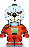 Astronaut Dog Stock Image