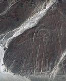 Astronaut ist von der Nazca-Wüste sichtbar Lizenzfreie Stockfotos