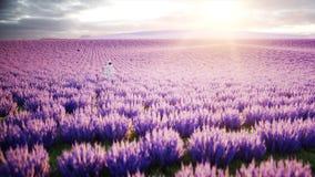 Astronaut met vlinders op lavendelgebied Concept toekomst uitzending het 3d teruggeven Royalty-vrije Stock Afbeeldingen
