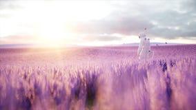 Astronaut met vlinders op lavendelgebied Concept toekomst uitzending het 3d teruggeven Royalty-vrije Stock Fotografie