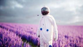 Astronaut met vlinders op lavendelgebied Concept toekomst uitzending het 3d teruggeven Stock Foto