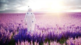 Astronaut met vlinders op lavendelgebied Concept toekomst uitzendings Realistische 4k animatie stock video