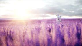 Astronaut met vlinders op lavendelgebied Concept toekomst uitzendings Realistische 4k animatie stock footage