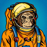 Astronaut monkey space suit pop art style vector Royalty Free Stock Photography