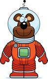 Astronauta do urso Fotografia de Stock Royalty Free
