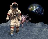 Astronauta engraçado, estrangeiro de espaço, Photobomb, aterrissagem de lua Fotografia de Stock