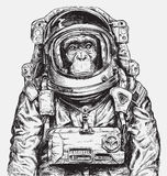 Astronaute tiré par la main Vector de singe Photo stock