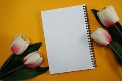 Astronautycznej kopii pusty notatnik z sztucznego kwiatu tłem fotografia stock