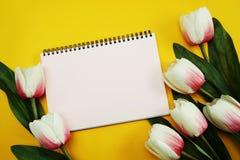 Astronautycznej kopii pusty notatnik z sztucznego kwiatu tłem obrazy royalty free