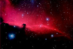 Astronomy. Horsehead Nebula in Orion - Astronomical Photograph taken through telescope Royalty Free Stock Image