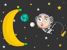 Astronot de singe Photo stock