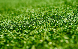 Astroturf. Astro-turf in royal project expo:photo taken on 27/03/10 Royalty Free Stock Images