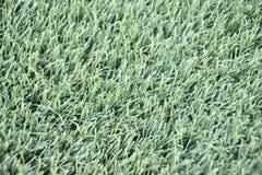 AstroTurf Artificial Grass