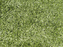 Astroturf Background. Astroturf covering on outdoor playing field Stock Images