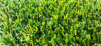 Astroturf much appreciated by manufacturers less appreciated by. Portion of the synthetic turf used for sports flooring Royalty Free Stock Photos