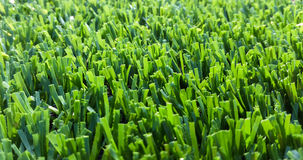 Astroturf much appreciated by manufacturers less appreciated by. Portion of the synthetic turf used for sports flooring Stock Images