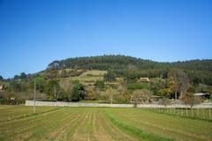 Asturian ландшафт 113 Стоковое фото RF