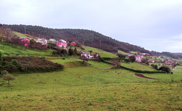 Asturian fields. Situated in the mountains of Asturias spain, you can see some rural houses and cattle Stock Image