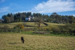 Asturian landscape 109 Stock Photography