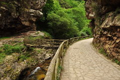Asturias, Spain: mountain path Royalty Free Stock Images