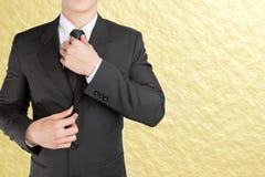Astuto looklike dell'uomo d'affari ben vestito regolando il suo legame del collo Immagine Stock Libera da Diritti