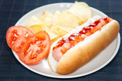 Asty hot dog isolated over white Royalty Free Stock Photos