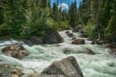 Asulkan Creek. Glacier National Park British Columbia Canada Royalty Free Stock Image