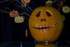Asustadizo las calabazas talladas para Halloween Imagen de archivo