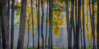 Asveja Regional Park royalty free stock photos