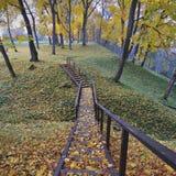 Asveja Regional Park Stock Photos