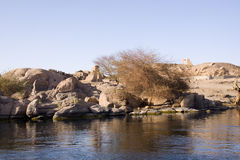 Aswan Stock Photos