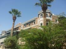Aswan. Cataract Hotel palms stock photo