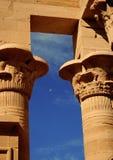 aswan egypt philaetempel Royaltyfri Foto