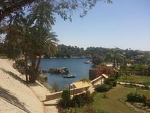 Aswan. Egypt  trees sunshine Royalty Free Stock Image