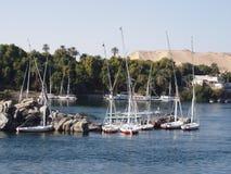 Aswan fabuloso Foto de Stock