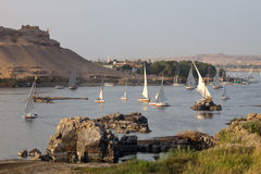 Aswan, felucca boats on the Nile. Typical felucca boats on the nile in Aswan Stock Photo