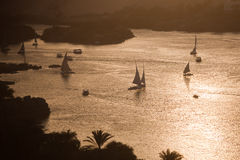 Aswan, felucca boats on the Nile. Typical felucca boats on the nile on an evening near Aswan Royalty Free Stock Photos