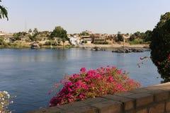 Aswan från överkanten - Egypten arkivfoto