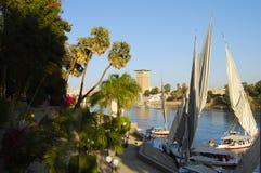 Aswan ogród botaniczny - Egipt obrazy stock