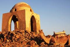 aswan tomb arkivbild