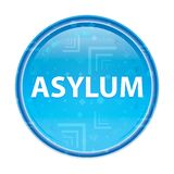Asylum floral blue round button. Asylum Isolated on floral blue round button stock illustration